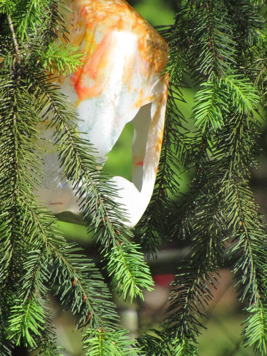 Upcycle a milk carton into a bird feeder