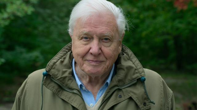Review of David Attenborough: A Life on Our Planet